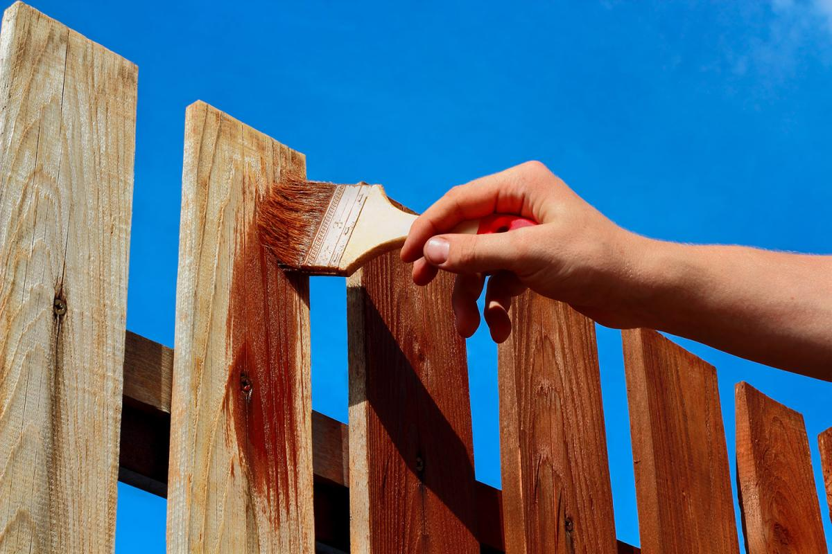 Fence Painting / Staining